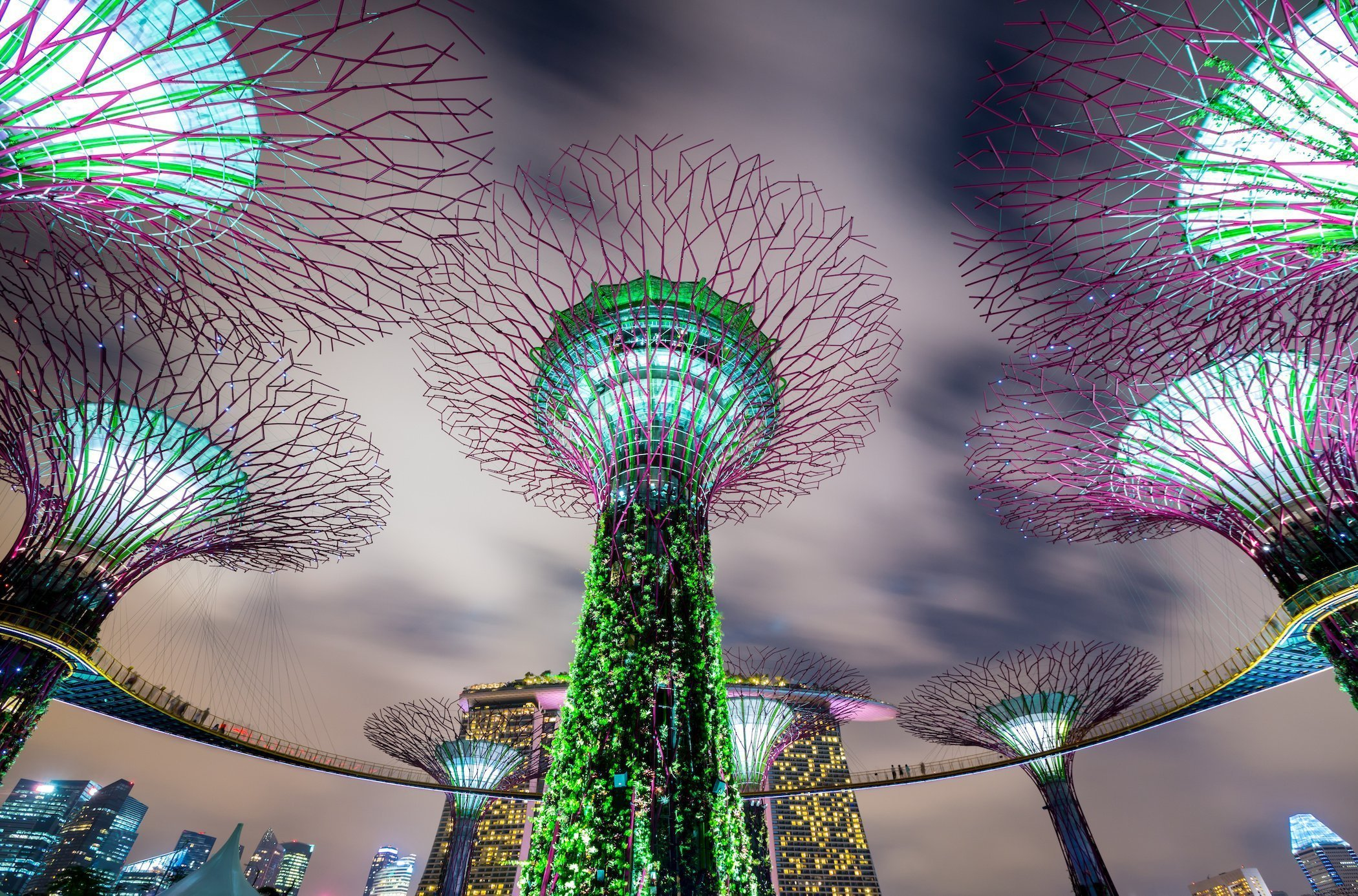 Night scenery of the artificial trees at the Singapore' s Garden By the Bay