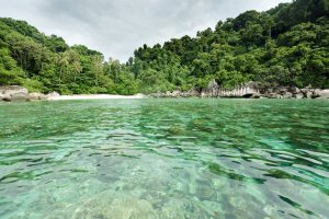 Landscape of Tioman Island with emerald transparent water.