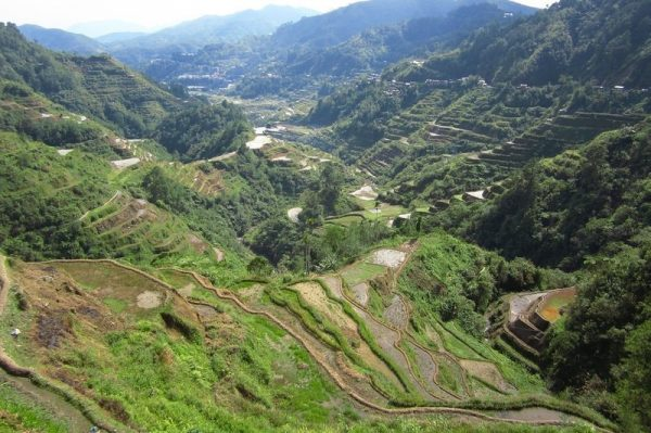 A green valley with rice terraces in Luzon Philippines
