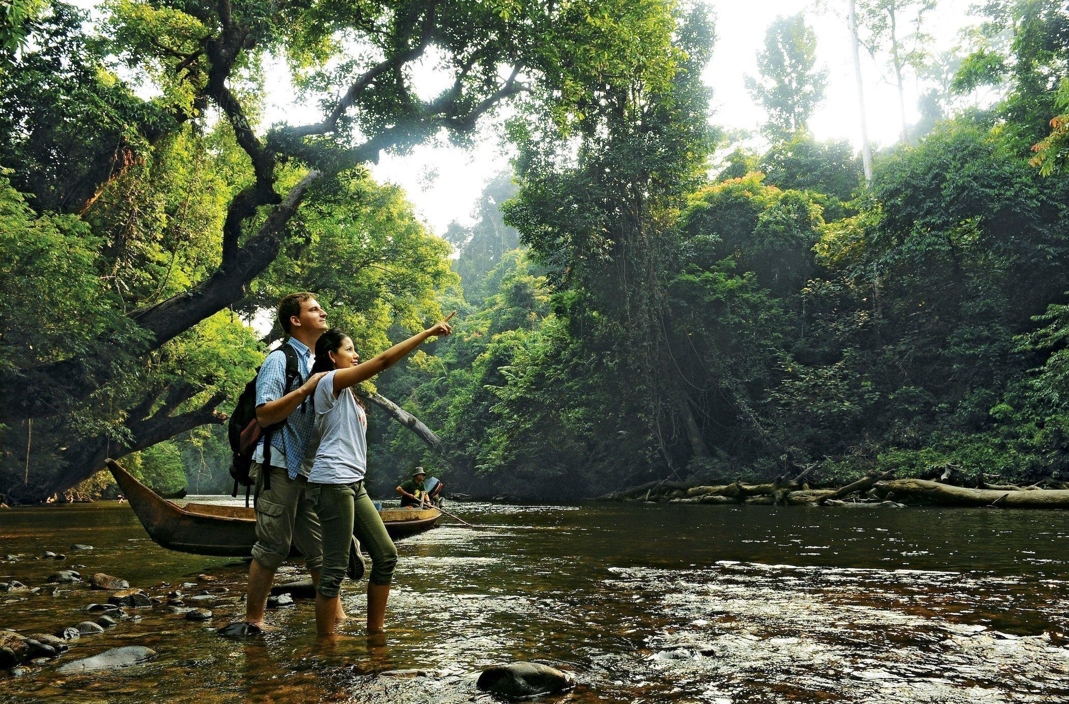 A couple of tourists admiring the rainforest in Taman Negara Malaysia