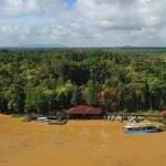 Aerial view of Abai Jungle Longe along the Kinabatangan River