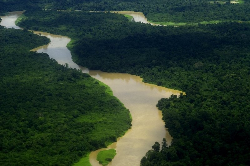 Aerial view of a river flowing through forest of Mulu National Park