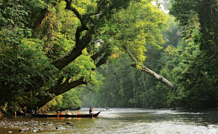 A longboat with tourists exploring the pristine rainforest of Malaysia' s Taman Negara National Park