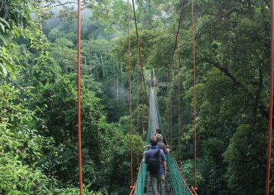 Tourists crossing Danum Valley's canopy walkway in the middle of the lowland forest