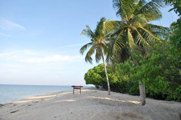 Beautiful beach in Selingan Turtle Island