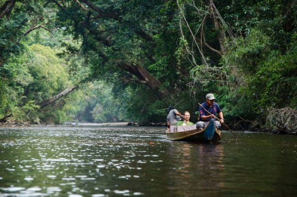 Tourists enjoying a boat cruise in Taman Negara's Rainforest