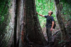 Tourist hiking in Borneo's lowland rainforest