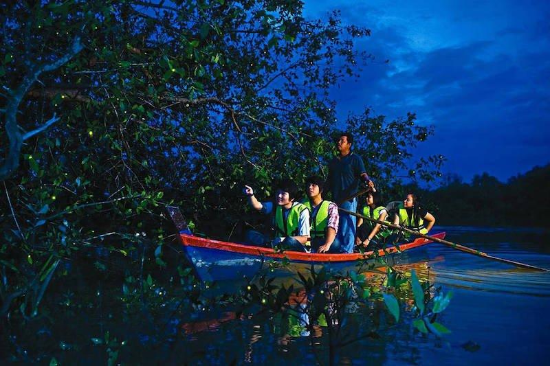 Tourists enjoying firefly watching in Selangor
